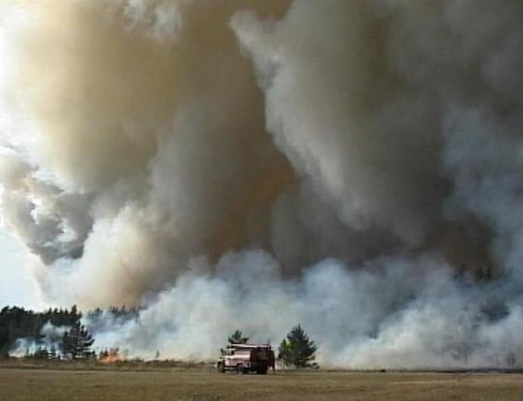 Особый режим вводится в лесах Челябинской области в связи с высокой пожарной опасностью