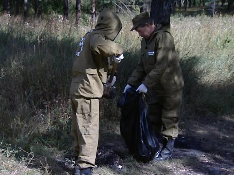 ВЧелябинской области создана бригада поблагоустройству Каштакского бора