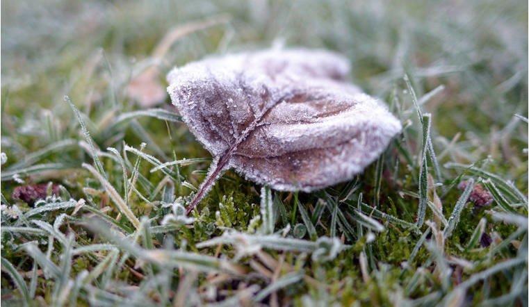 Минус 4 градуса имокрый снег ожидают  южноуральцев ввыходные