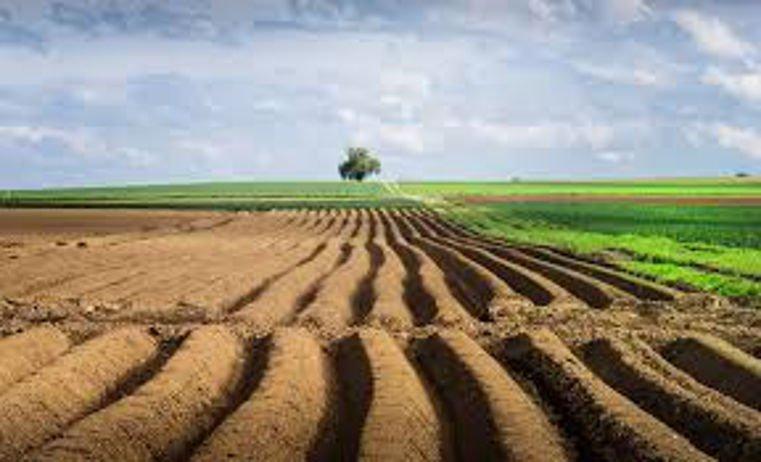 это об аренде сельскохозяйственных земель небольшой толпе