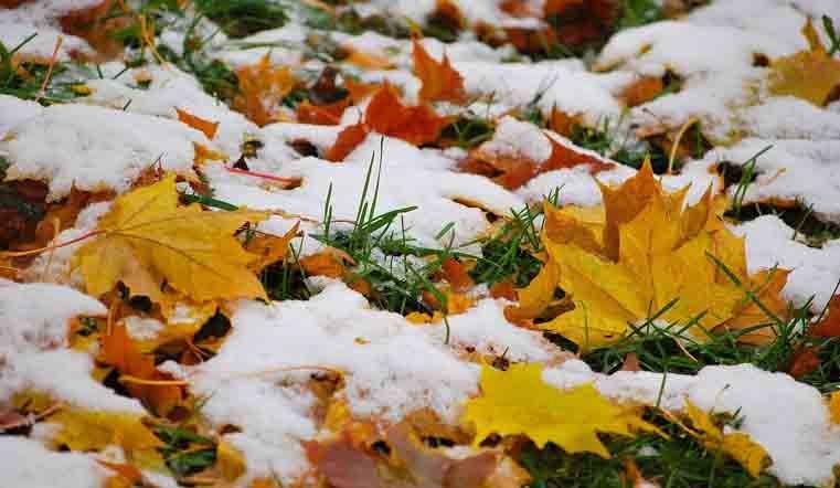 ВТюмени ожидают мокрый снег исильный ветер
