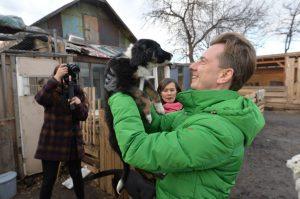 Инициатива Бурматова по ужесточению наказания за жестокость с животными