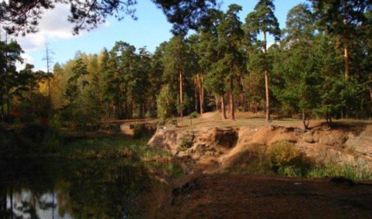 Челябинцы выиграли грант насоздание эко-тропы вгородском бору