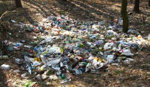 Челябинцы считают, что за экологию должны отвечать власти