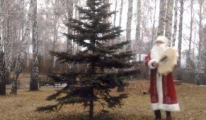 Дед Мороз шаман