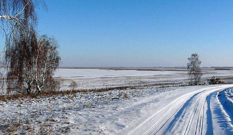 Тело мертвого малыша обнаружили влесу наЮжном Урале