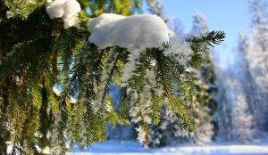 На Южном Урале пройдет снег