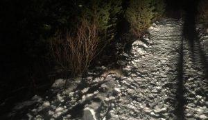 В Челябинской области разбился мужчина на снегоходе