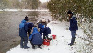 Специалисты берут пробы воды
