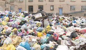 У домов нет управляющей компании, поэтому и мусор вывозить некому