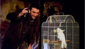 Кмерный театр ищет подружку для попугая какаду