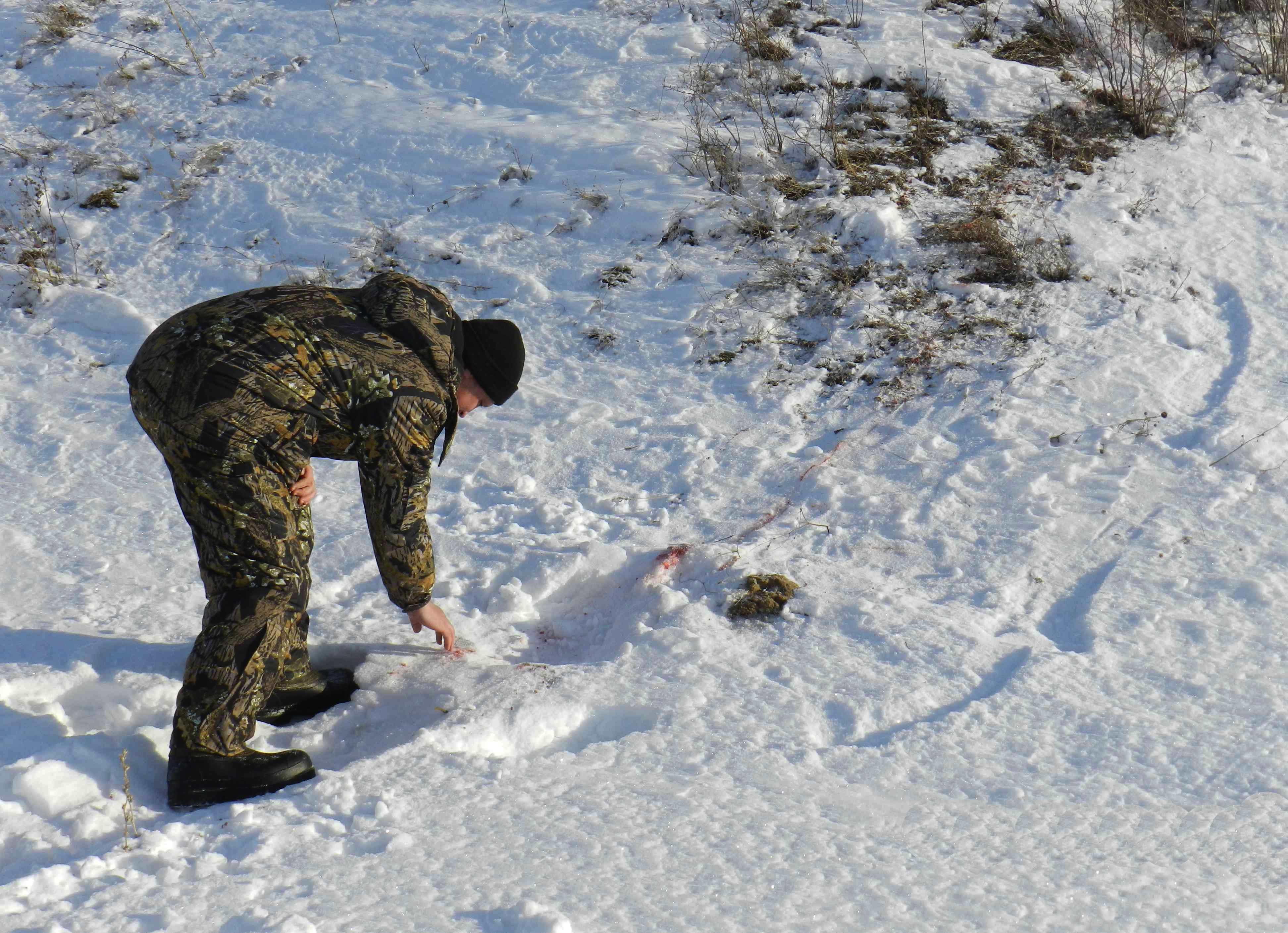 Вубийстве подозреваются браконьеры. ВКарталах убит инспектор охотнадзора