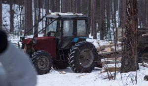 Волонтеры рассказали об уничтожении леса на Тургояке
