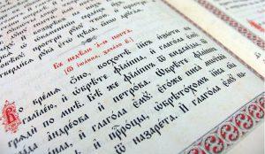 Сегодня во всем мире отмечают День родного языка