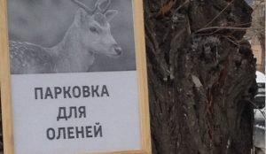 Парковки для оленей в Челябинске