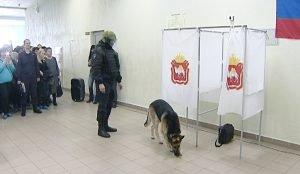 Учения экстренных служб на избирательном участке