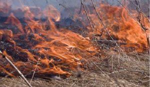 В Челябинской области с 15 апреля объявили пожароопасный сезон
