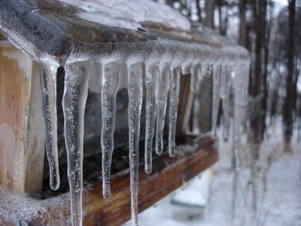 Всё не по плану. Неожиданный прогноз погоды на Урале