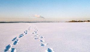 Двое южноуральцев замерзли в поле