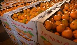 Россельхознадзор ввел запрет на ввоз фруктов и овощей из Абхазии