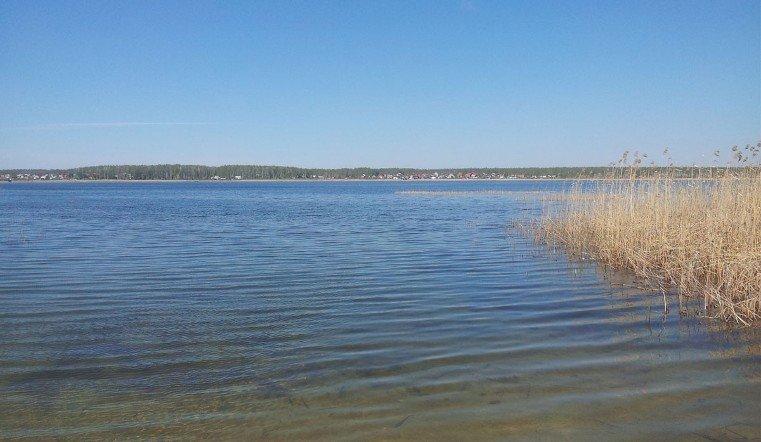 Самую дорогую дачу вЧелябинской области реализуют за61 млн руб.