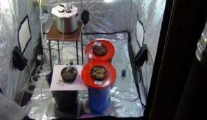 За организацию нарколаборатории в бане задержан житель Копейска