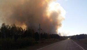 На трассе в Челябинской области закрыли движение из-за пожара
