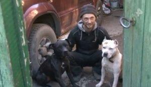 В Челябинске осужден хозяин собак, напавших на 9-летнего ребенка