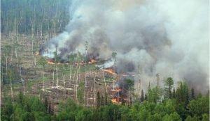 В Челябинской смог от пожаров вызвал массовые жалобы на ухудшение здоровья