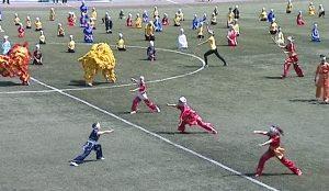Более тысячи юных спортсменов со всей области соревновались в поединках саньда, комплексах туйшоу и таолу