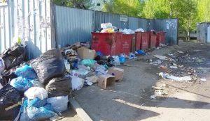 Горячая линия по вопросам уборки контейнерных площадок