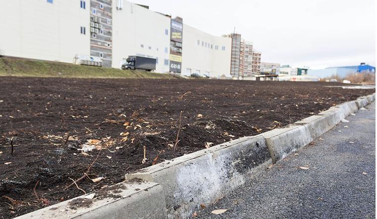 Магнитогорские вандалы возместили ущерб парку