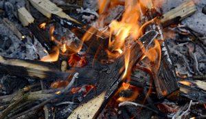 Три поросенка сгорели на садовом участке в Магнитогорске