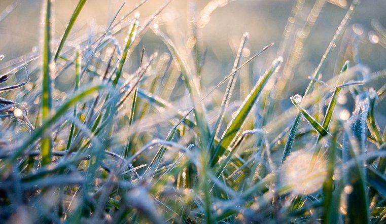 Заморозки летом