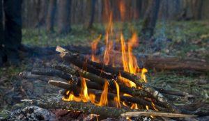 Из жары южноуральцам рекомендуют не разжигать костры в лесах