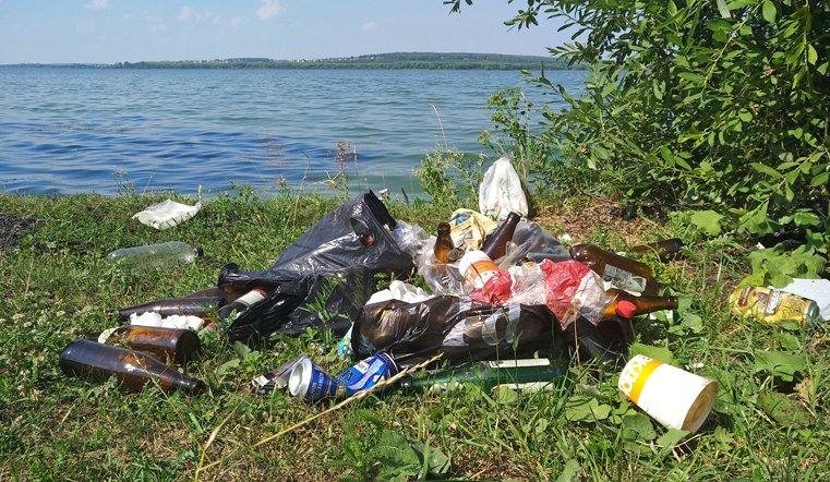 Шершни завалены мусором