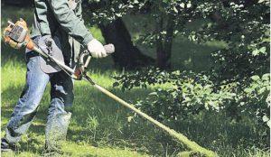 В Челябинске со всех газонов выкосили траву