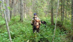 На Южном Урале заблудились двое грибников
