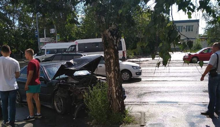 В Челябинске береза спасла пассажиров на остановке от машины