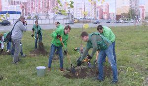 Высадка деревьев в Челябинске