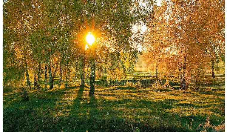 Теплую погоду в ближайшие дни обещают на Южном Урале
