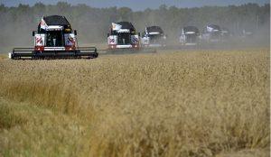На Южном Урале планируют собрать не менее 2 млн тонн зерновых
