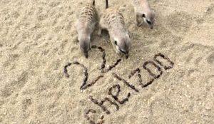День рождения челябинского зоопарка
