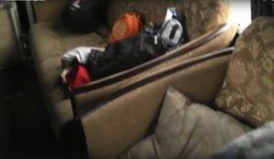 Мигранты из Киргизии ехали на автобусе, где вместо кресел были диваны