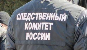 На Урале девушку подозревают в убийстве брата с особой жесткостью