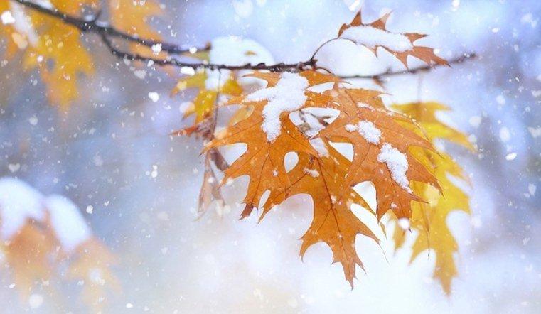 В Челябинской области к концу недели ожидают снег