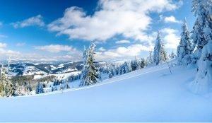 Синоптики прогнозируют теплую зиму