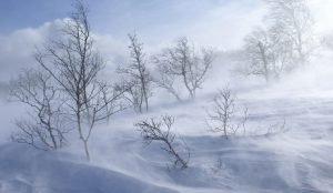 Сноса снег, метели и гололед прогнозируют на Южном Урале