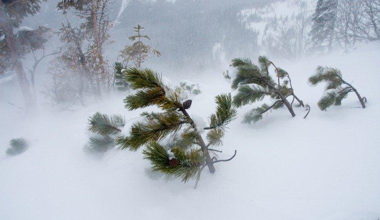 В Челябинской области штормовое предупреждение 1 декабря
