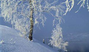 Афанасьевские морозы ожидают на Южном Урале